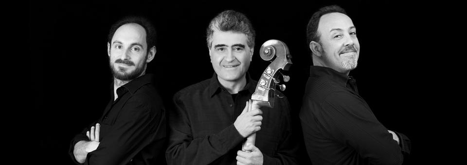 תמונת נושא עבור Garcia Fons Trio